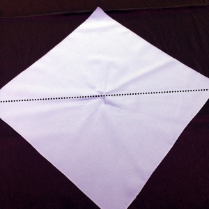 Envelope Napkin Fold Step 2